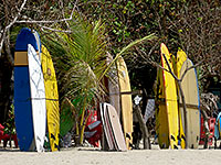 Boards for rent