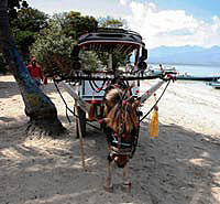 Cidomo at Gili Trawangan beach